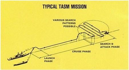 Tên lửa hành trình Tomahawk-những biến thế hiện nay (P2) ảnh 3