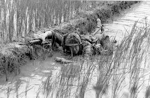 Cuộc chiến tranh Việt Nam qua ảnh của Henry Hyuet ảnh 11