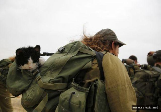Những nữ quân nhân xinh đẹp Israel khiến giới mày râu cũng phải cúi chào ảnh 63