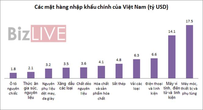 Những mặt hàng mang về cho Việt Nam vài chục tỷ USD ảnh 2