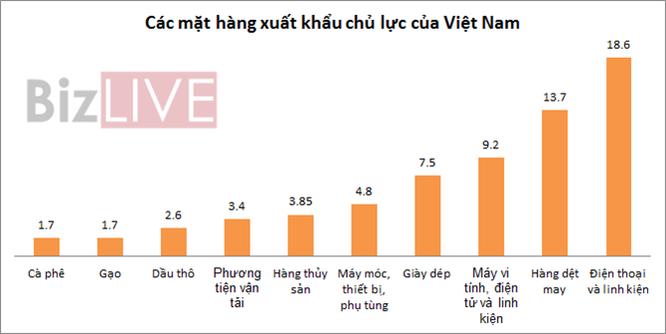 Những mặt hàng mang về cho Việt Nam vài chục tỷ USD ảnh 1