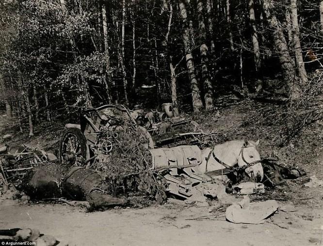 Chùm ảnh bi thảm Đại chiến thế giới thứ II của tướng 4 sao Mỹ ảnh 15