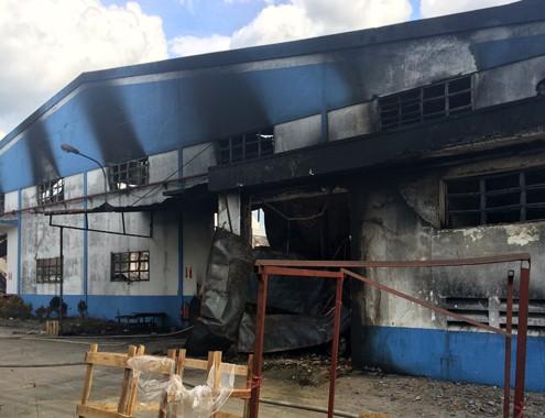 100 cảnh sát chữa cháy ở công ty gỗ Malaysia ảnh 1