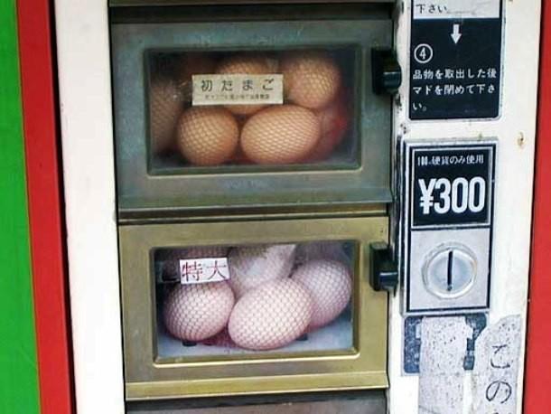 25 điều kỳ lạ đến điên rồ chỉ có thể được tìm thấy ở Nhật Bản ảnh 13