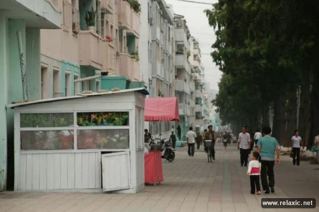Khám phá đất nước Triều Tiên qua ảnh ảnh 10