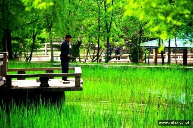 Khám phá đất nước Triều Tiên qua ảnh ảnh 108