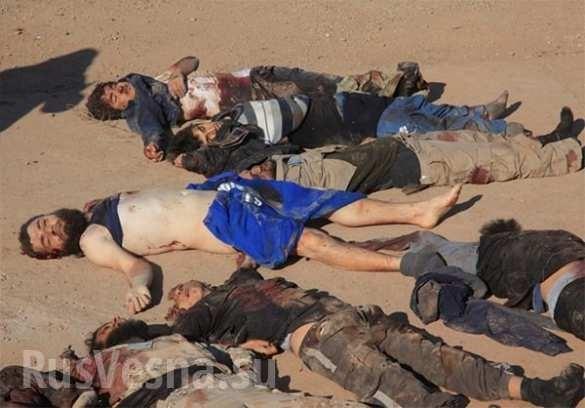Aleppo, hàng trăm chiến binh IS bị tiêu diệt ảnh 4