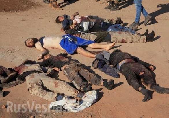 Aleppo, hàng trăm chiến binh IS bị tiêu diệt ảnh 5