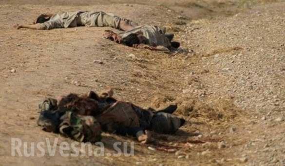 Aleppo, hàng trăm chiến binh IS bị tiêu diệt ảnh 6