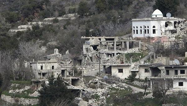 Quân đội Syria đẩy mạnh tấn công ở Aleppo, bắt đầu đàm phán Geneve về Syria ảnh 16