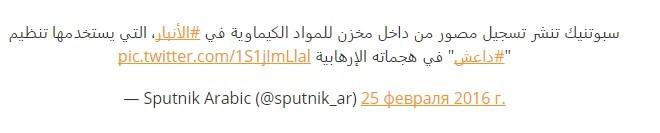 Sputnik: Đã chứng minh được IS sử dụng vũ khí hóa học ảnh 2