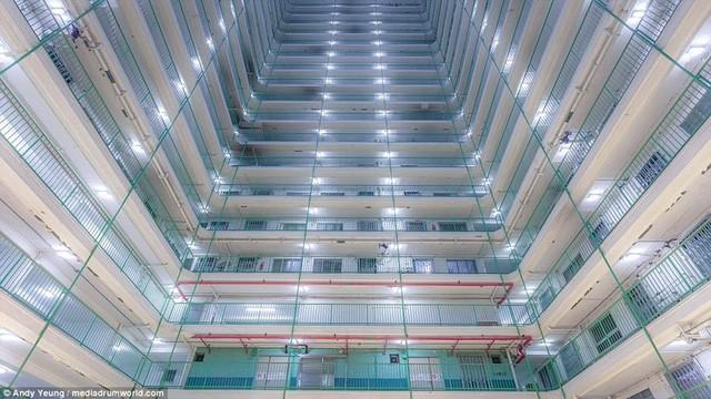 Hong Kong chật kít nhà cao tầng qua góc nhìn Flycam ảnh 9
