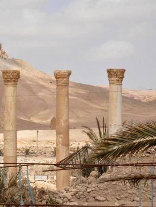 Cận cảnh thành phố Palmyra sau khi giải phóng (ảnh + video) ảnh 12