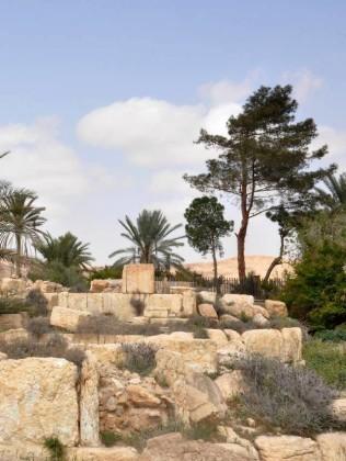 Cận cảnh thành phố Palmyra sau khi giải phóng (ảnh + video) ảnh 20
