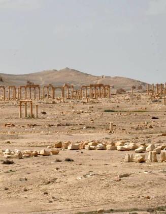 Cận cảnh thành phố Palmyra sau khi giải phóng (ảnh + video) ảnh 21