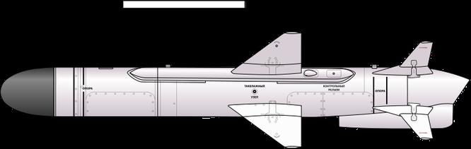 """Tên lửa Kh-35UE Việt Nam với chiến thuật """"bầy sói"""" ảnh 8"""