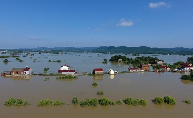 Siêu bão Nepartak gây hỗn loạn chưa từng có trên miền Đông Trung Quốc (video) ảnh 7
