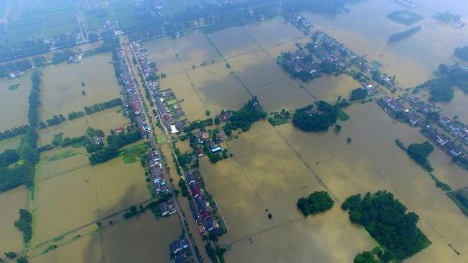 Siêu bão Nepartak gây hỗn loạn chưa từng có trên miền Đông Trung Quốc (video) ảnh 14