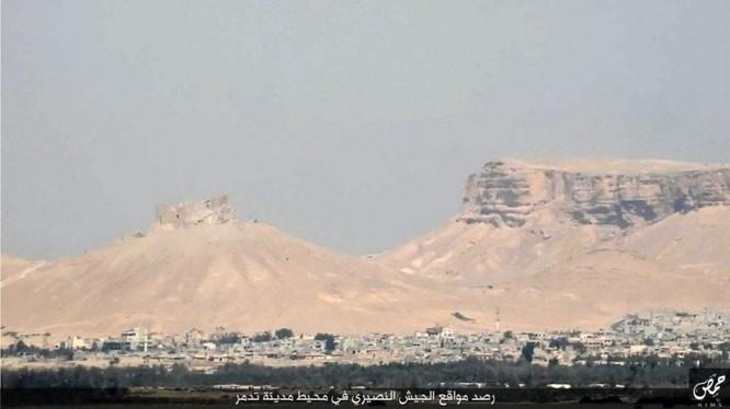 Quân đội Syria đánh chiếm khu hạt giống Palmyra ảnh 3