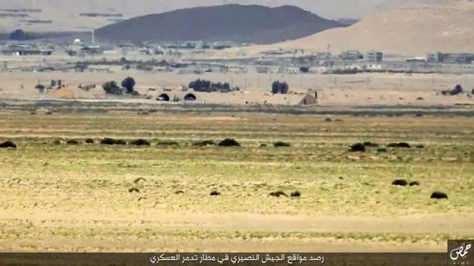 Quân đội Syria đánh chiếm khu hạt giống Palmyra ảnh 4