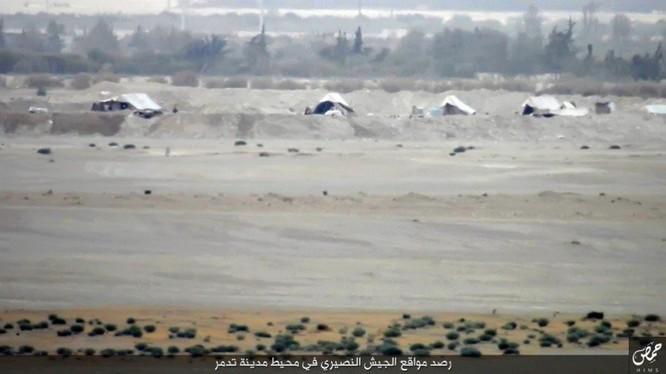 Quân đội Syria đánh chiếm khu hạt giống Palmyra ảnh 5