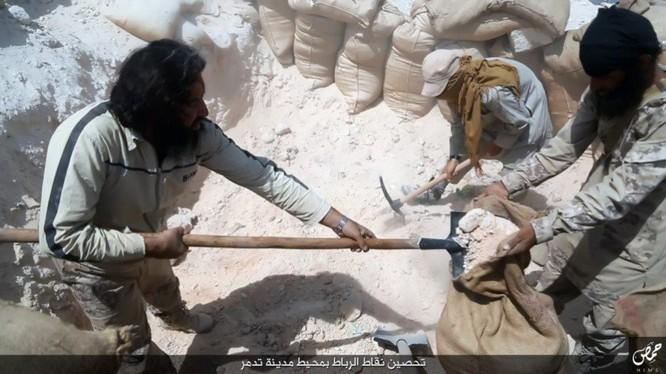 Quân đội Syria đánh chiếm khu hạt giống Palmyra ảnh 13