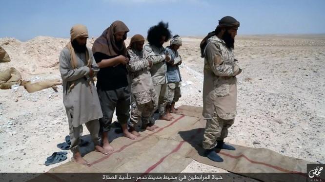 Quân đội Syria đánh chiếm khu hạt giống Palmyra ảnh 14