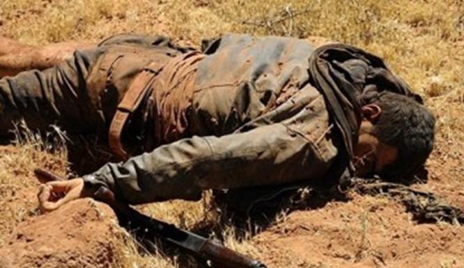 Quân đội Syria tiêu diệt nhiều thủ lĩnh Hồi giáo cực đoan trên Cao nguyên Golan ảnh 1
