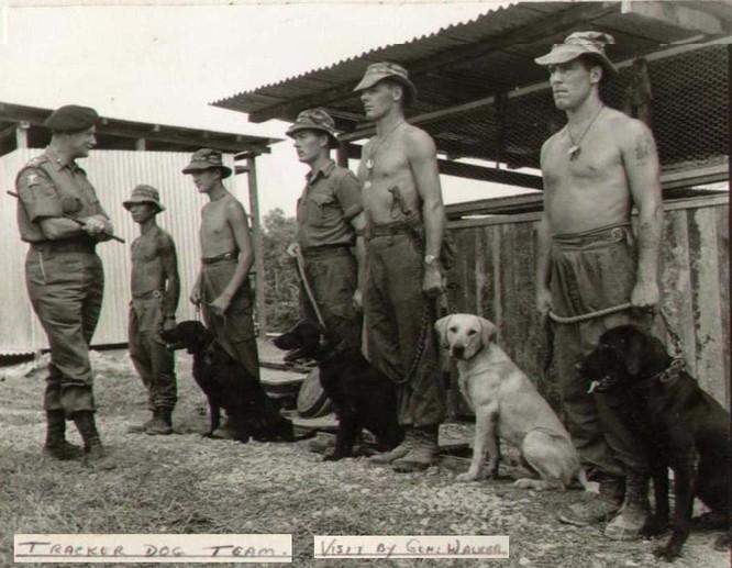 """Chiến trường Việt Nam và bí mật về các biệt đội """"săn người"""" Mỹ ảnh 2"""