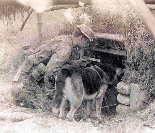 """Chiến trường Việt Nam và bí mật về các biệt đội """"săn người"""" Mỹ ảnh 3"""