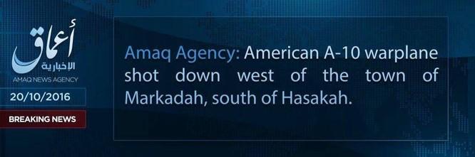 IS tuyên bố bắn hạ máy bay Mỹ trên miền Bắc Syria ảnh 1