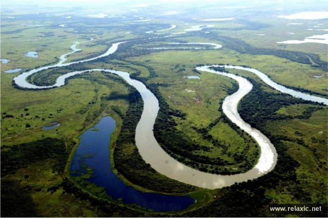 Kỳ thú khu tự nhiên hoang dã Pantanal - Brazil ảnh 1