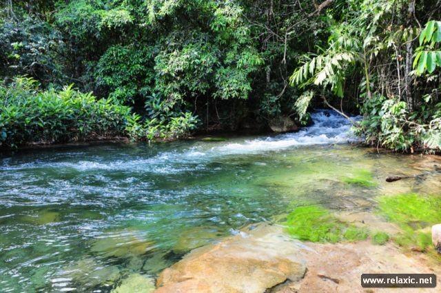 Kỳ thú khu tự nhiên hoang dã Pantanal - Brazil ảnh 24