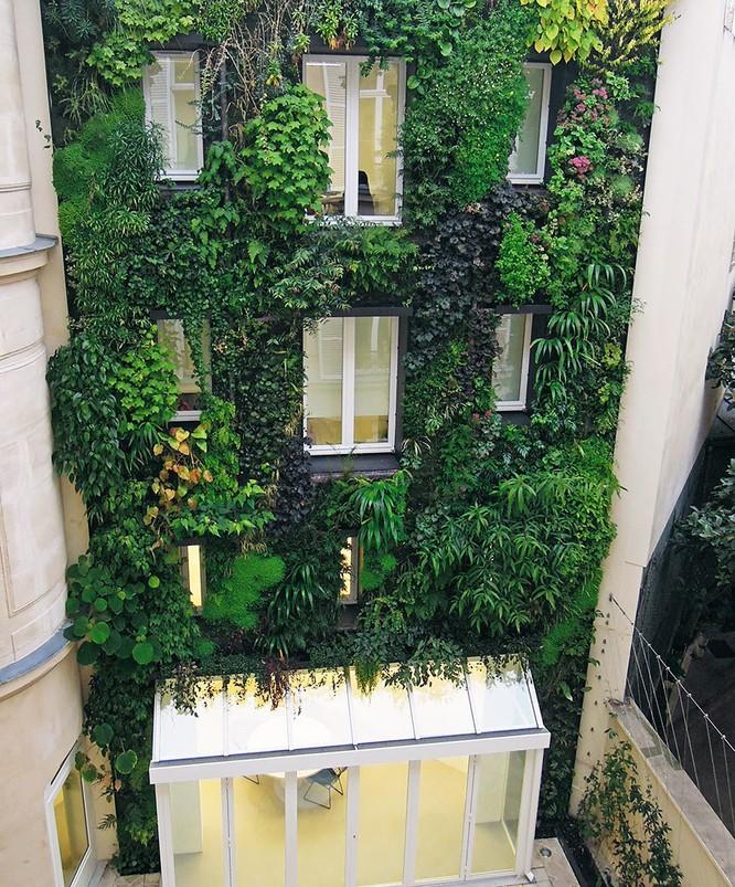 Paris tráng lệ sẽ còn xanh và đẹp hơn ảnh 4