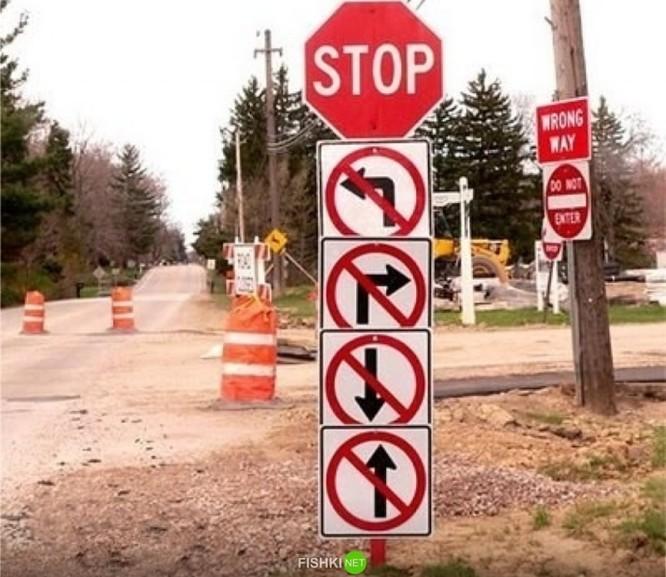Đến Táo giao thông cũng phải bật cười ảnh 7
