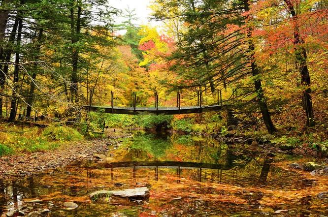 Tuyệt đẹp cảnh sắc mùa thu trên khắp nước Mỹ ảnh 31