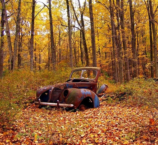 Tuyệt đẹp cảnh sắc mùa thu trên khắp nước Mỹ ảnh 35