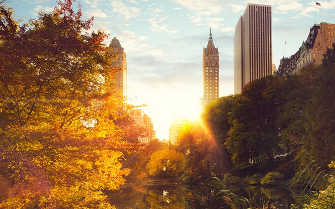 Tuyệt đẹp cảnh sắc mùa thu trên khắp nước Mỹ ảnh 36