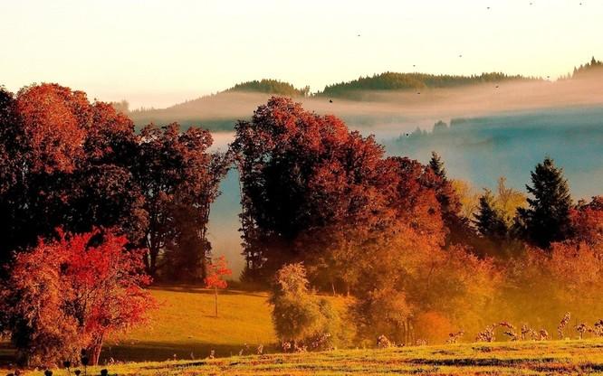 Tuyệt đẹp cảnh sắc mùa thu trên khắp nước Mỹ ảnh 40