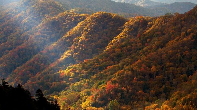 Tuyệt đẹp cảnh sắc mùa thu trên khắp nước Mỹ ảnh 44