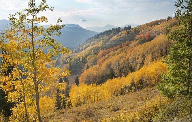 Tuyệt đẹp cảnh sắc mùa thu trên khắp nước Mỹ ảnh 50