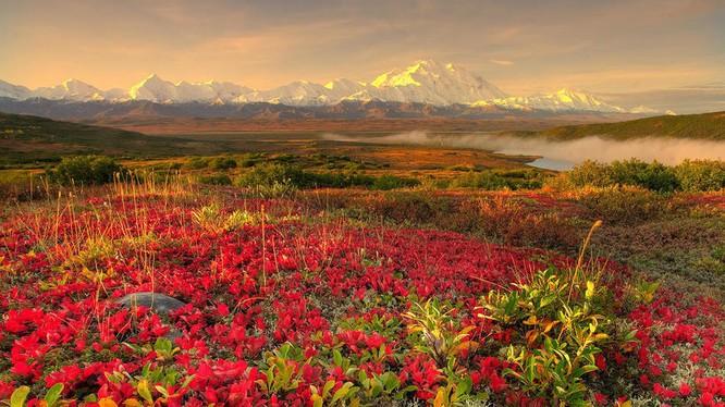 Tuyệt đẹp cảnh sắc mùa thu trên khắp nước Mỹ ảnh 4