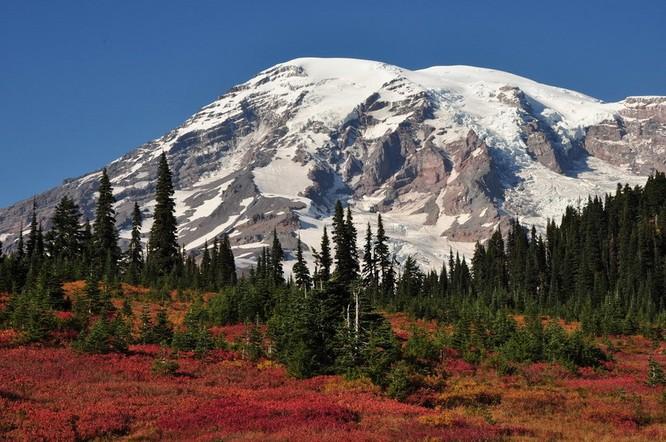 Tuyệt đẹp cảnh sắc mùa thu trên khắp nước Mỹ ảnh 8