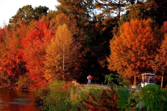 Tuyệt đẹp cảnh sắc mùa thu trên khắp nước Mỹ ảnh 14