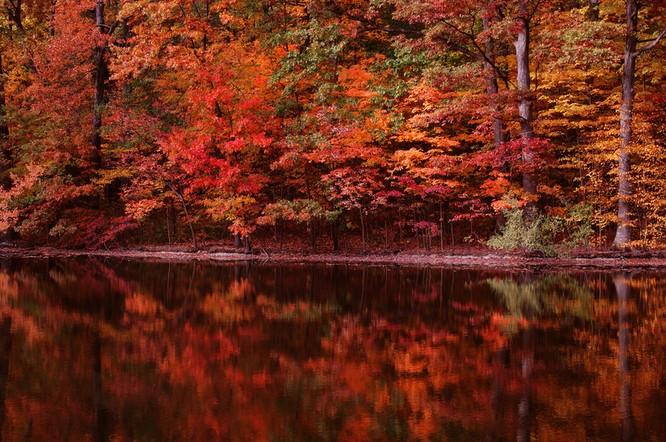 Tuyệt đẹp cảnh sắc mùa thu trên khắp nước Mỹ ảnh 17