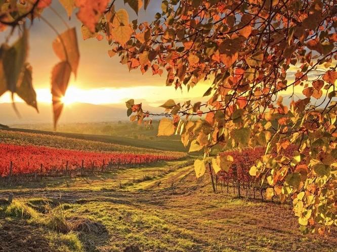 Tuyệt đẹp cảnh sắc mùa thu trên khắp nước Mỹ ảnh 22