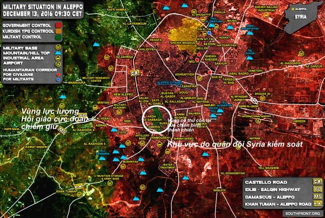 Sau khi giải phóng Aleppo, quân đội Syria có thể quét sạch IS ở tỉnh Homs? ảnh 1