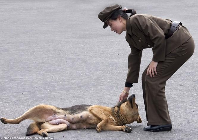 Binh sĩ Triều Tiên trước giông bão chiến tranh (ảnh + video) ảnh 7