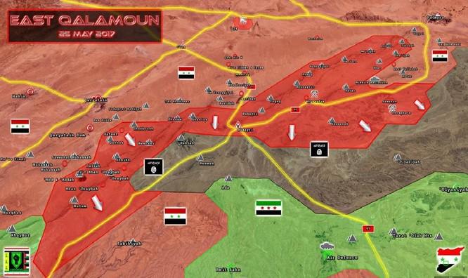 Trực thăng Nga săn diệt IS, quân đội Syria giải phóng 3.500 km2 nam Palmyra ảnh 2