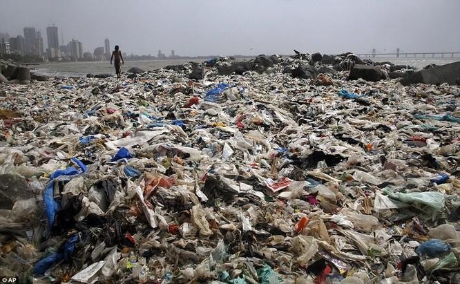 """Chiến dịch dọn rác bãi biển lớn nhất thế giới """"quét"""" hơn 5.000 tấn rác ảnh 1"""
